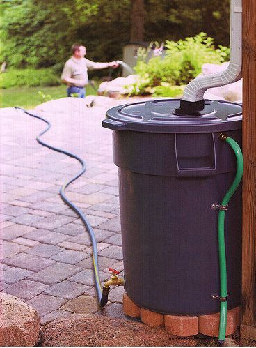 """Reduce, reuse, recycle...love it!  I need a rain collection """"can""""!"""