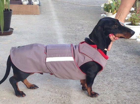 27 best Extra Warm Winter Dog Coats by PepperPetWear ...