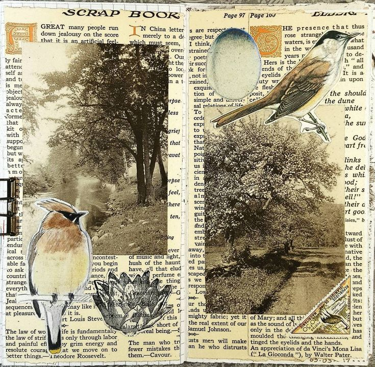 This is the final collage in my 3rd Midori insert. It's also a mate to one of my collages from February 12. I liked the original format so much that I did another very similar to the first. #constancerosedesigns #collage #collagejourney #collageartist #artjournal #mtn #midoritravelersnotebook #vintagepaper