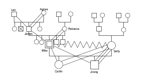 how to draw a genogram in word