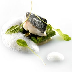 #128520 - Sea Bass Celeriac Puree By TasteSpotting -- see more at LuxeFinds.com