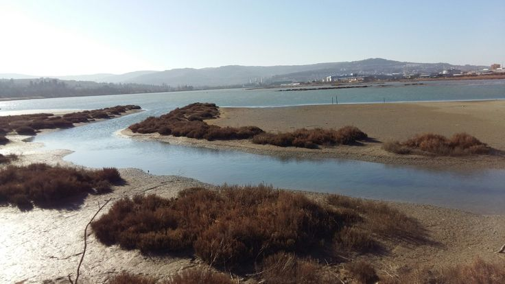 Škocjanski zatok Koper