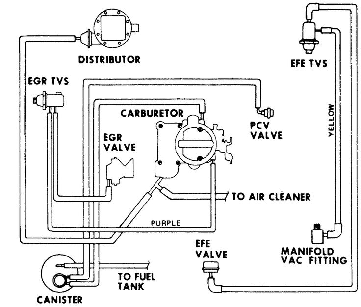Vacuum Diagram 1977  Chevy 250 Inline 6 Cyl C