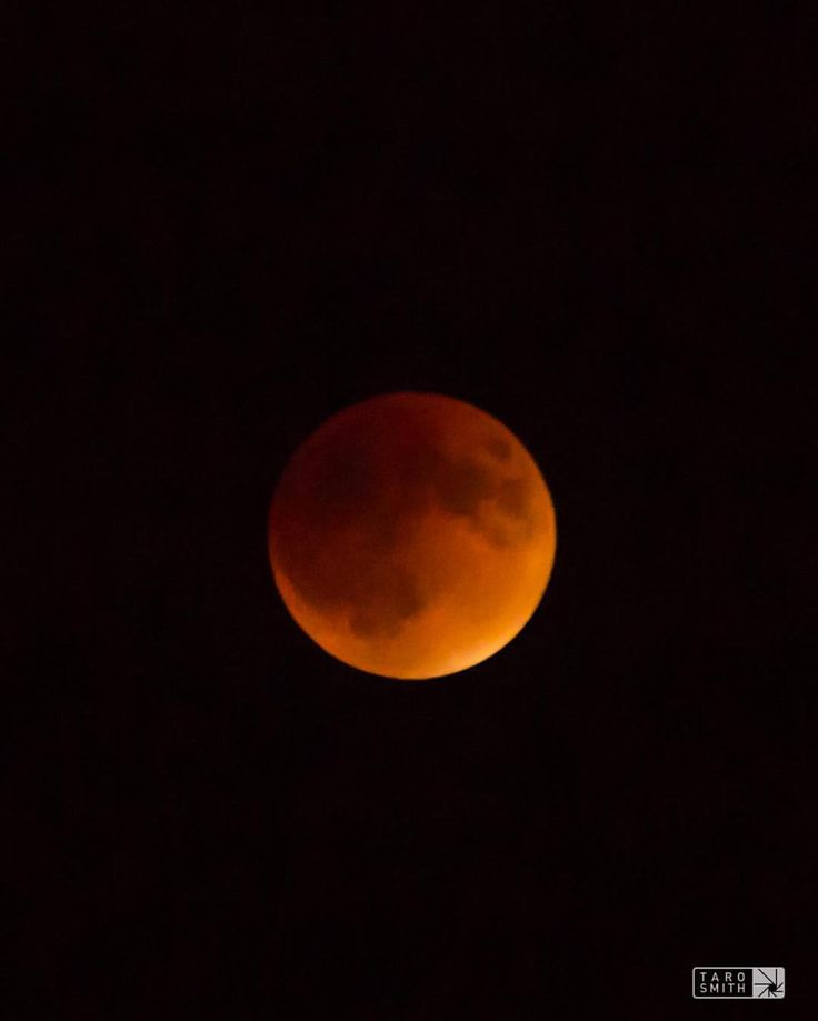 "Taro Smith (@taro.smith) on Instagram: ""Super blood moon eclipse over Boulder. #supermoon #bloodmooneclipse #moon #bloodmoon #boulder…"""