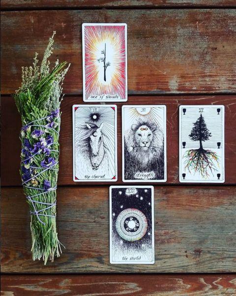 the wild unknown tarot tarot readings image via @mysticmoons_tarot  tarot cards, tarot spread, sage, smudge stick, the world, ace of wands, the chariot, strength