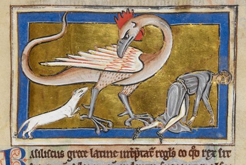 """Basilisk.  BL Royal 12 C XIX f.63 """"Bestiary and various theological texts"""" S.XIII"""