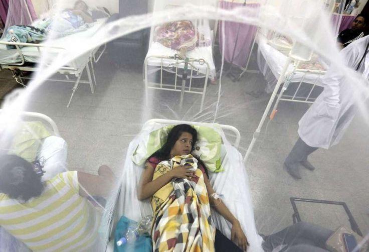 Vacuna contra el dengue solo es efectiva si se tuvo la enfermedad