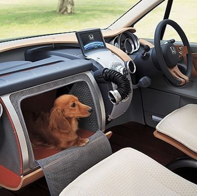 54 best BEST CAR ACCESSORIES FOR FIDO | Car Gear For Your Best Bud ...