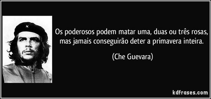 Os poderosos podem matar uma, duas ou três rosas, mas jamais conseguirão deter a primavera inteira. (Che Guevara)
