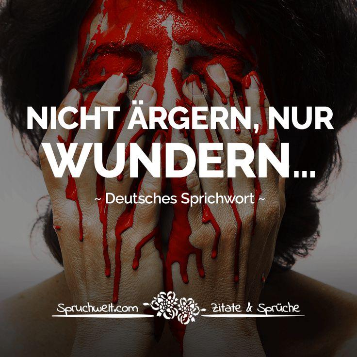 Nicht ärgern, nur wundern… - Deutsches Sprichwort #zitate #sprüche #spruchbilder #deutsch