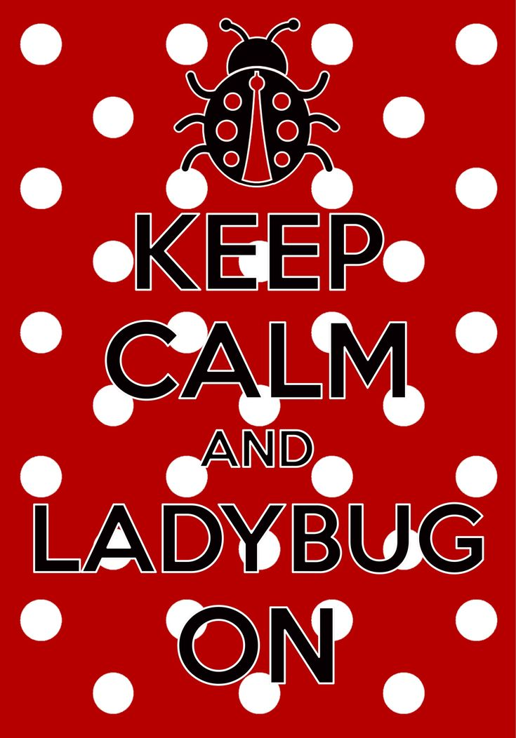 keep calm and ladybug on / created with Keep Calm and Carry On for iOS #keepcalm #ladybug