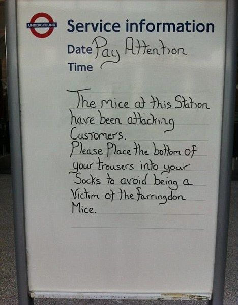 helpful staff at Farringdon train station warn Londoners about the mice...