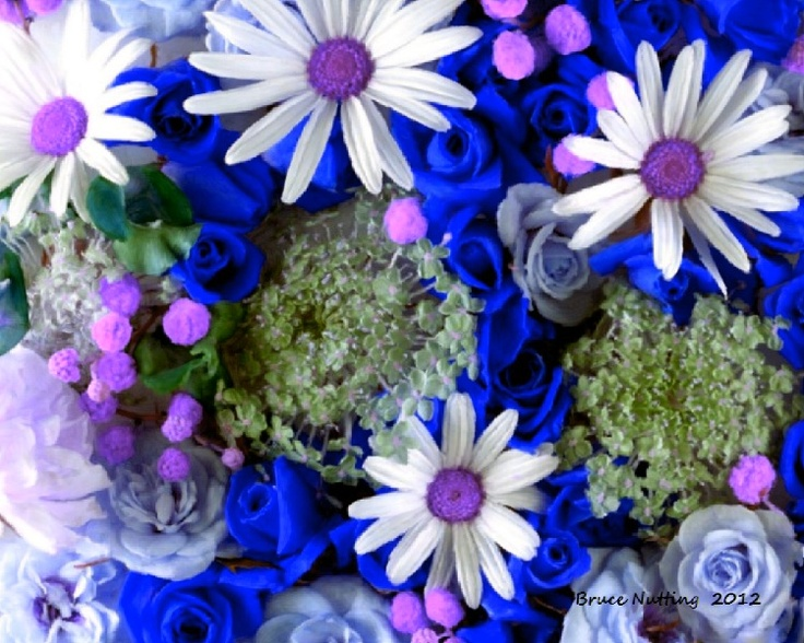 Dark Blue Rose Flower Bouquet | Flowers by Bruce Nutting ...