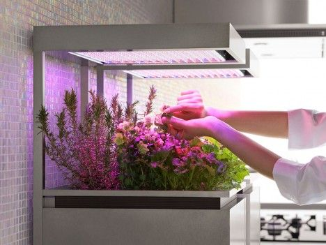 Herb Pot by Toyo Kitchen detachable vegetable and herb planter that uses LED lights to help & 22 best LED Grow Lights images on Pinterest | Lights At home and ... azcodes.com