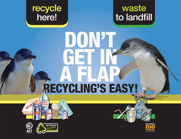 ACTSmart Campaign Zoo bin waste recycling poster design  http://www.spectrumgraphics.com.au/