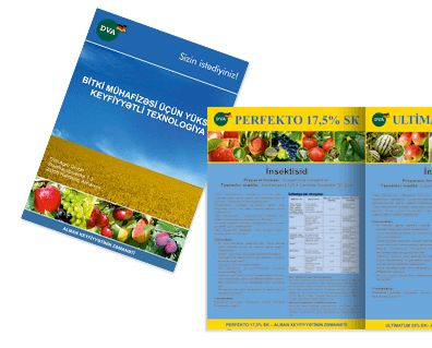 Создание брошюры для DVA в Кишиневе, Молдова