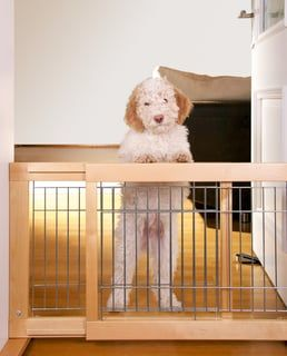 Extra Wide Dog Gate with Door – These 4 Gates are Best