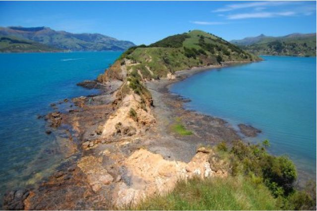 4 Budget Friendly Things to Do in New Zealand