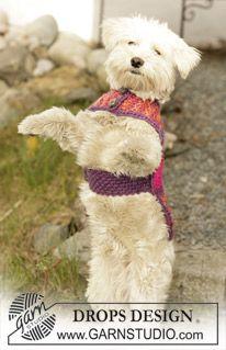 """Gebreide DROPS hondendekje in gerstekorrelst van """"Eskimo"""". ~ DROPS Design"""