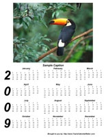 Yearly Calendar Maker! Create and print your FREE yearly photo calendar