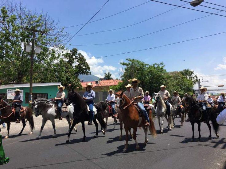 Honduras: Arranca en San Pedro Sula el desfile hípico de la Agas Desde la tercera avenida a la avenida circunvalación será el recorrido.