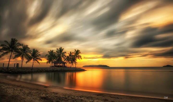 Borneo 2010