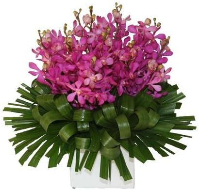 Bloomin Boxes :: Only Orchids