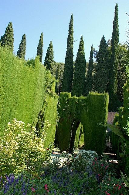 Garden, Generalife by Monceau