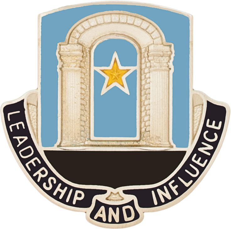 303RD INFORMATION OPERATIONS BATTALION