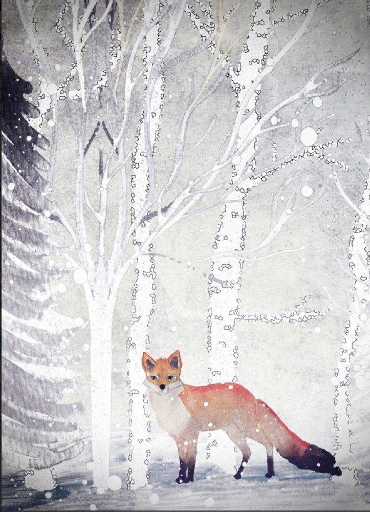 fox in woods illustration//