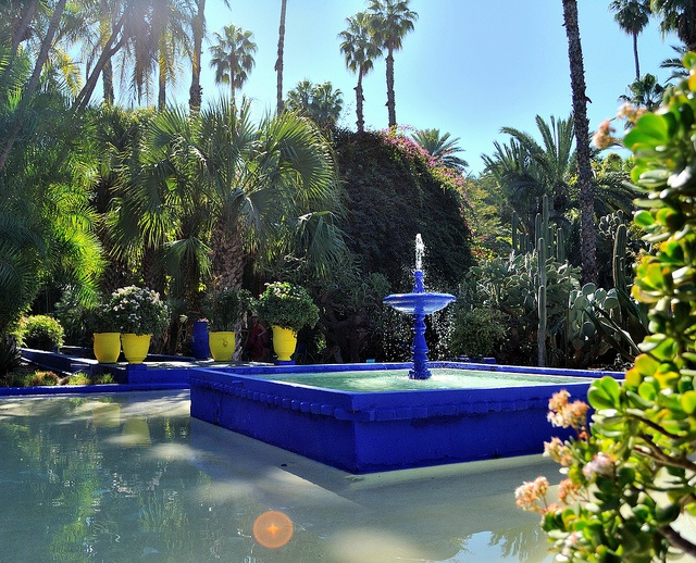 19 best images about gardens jardin majorelle marrakech for Jardin yves saint laurent marrakech