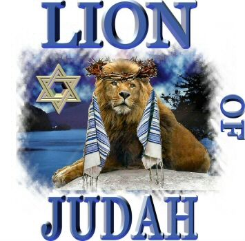 Behold the Lion of the Tribe of Judah!                                                                                                                                                     More