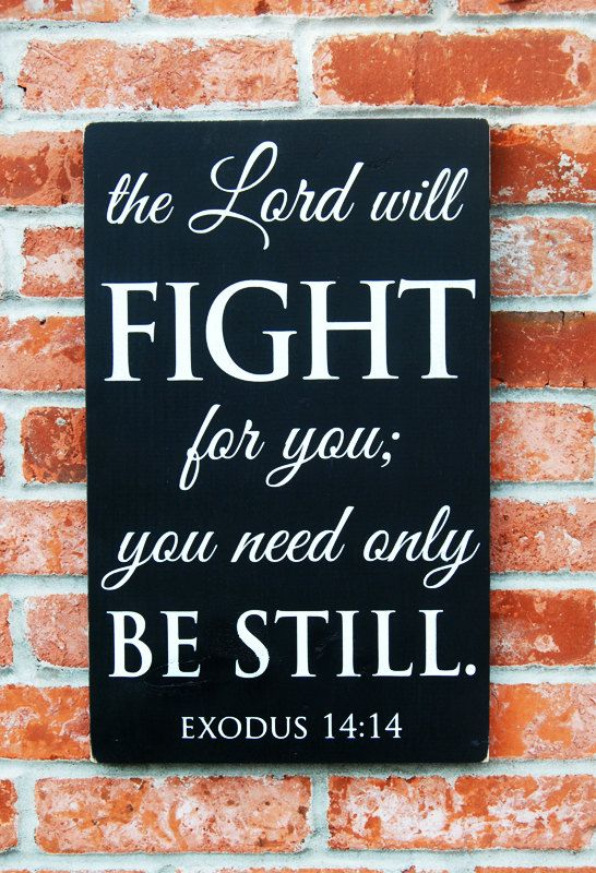 I love Ex 14:14...I also love Isaiah 41:10 So do not fear, for I am with you; do not be dismayed, for I am your God. I will strengthen you and help you; I will uphold you with my righteous.