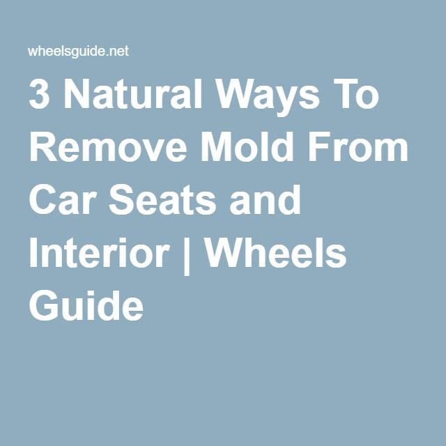 3 Natural Ways To Remove Mold From Car Seats And Interior Wheels Guide Misc Pinterest