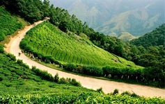 Munnar 3 Nights Adventure Package