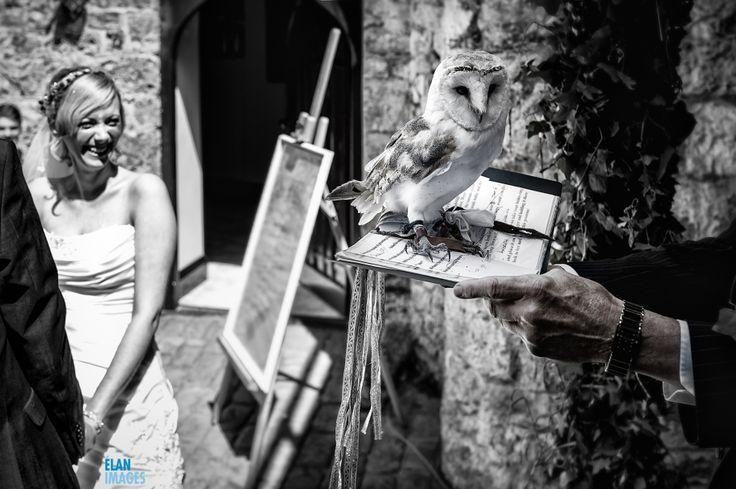 Ring Bearing Owl fail - wedding at Banwell castle