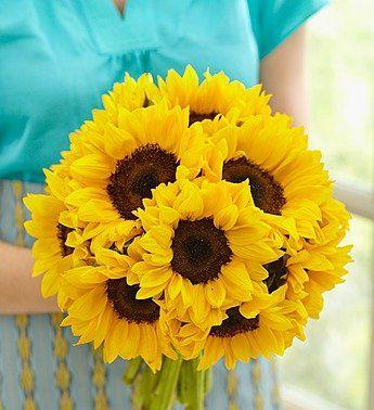 1-800-Flowers - Sunflower Bouquet, 10-20 Stems - 10 Stems Bouquet Only By... - http://yourflowers.us/1-800-flowers-sunflower-bouquet-10-20-stems-10-stems-bouquet-only-by/