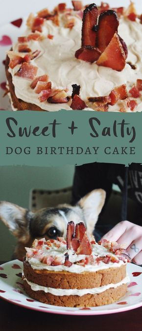 This Sweet and Salty Dog Birthday Cake is the perfect cake to celebrate your bes…  – Doggy snack business