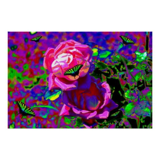 Rainbow Butterflies and Pink Roses Print