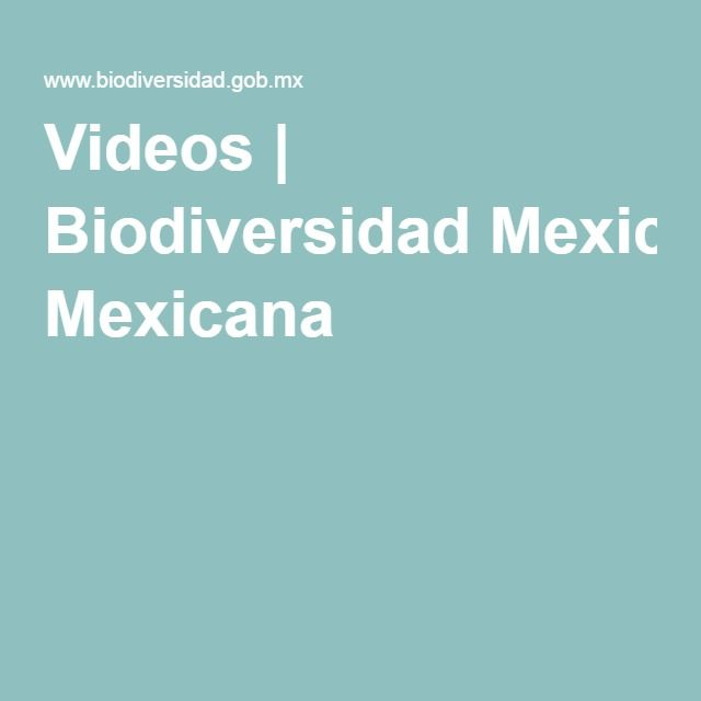 Videos | Biodiversidad Mexicana