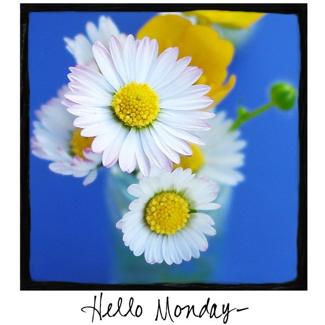 Hello Monday! Come by and check out A Warm Hello on Facebook at https://www.facebook.com/awarmhello