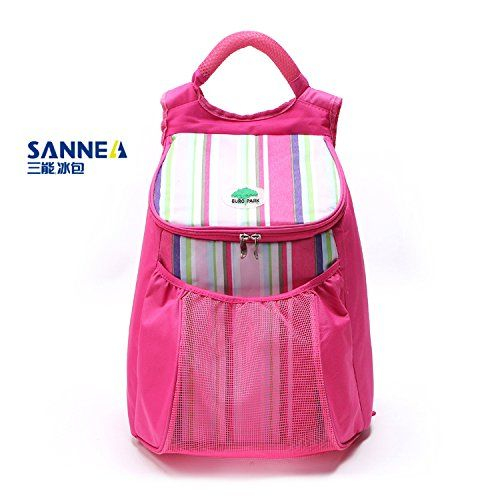 Sanne ice pack outdoor picnic bag of refrigerated bag coo... https://www.amazon.co.uk/dp/B073XHBHT2/ref=cm_sw_r_pi_dp_x_xVgAzbHFW6C2T