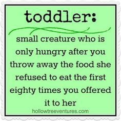 funny toddler quotes - Google Search