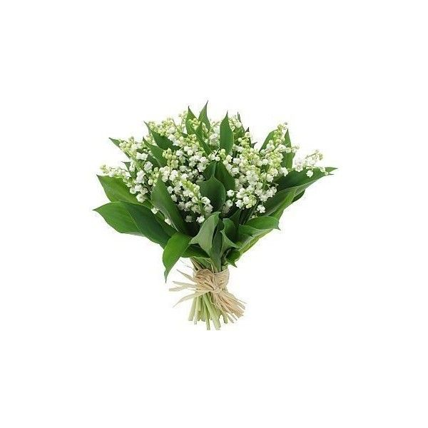 FLEURS - *** Muguet *** - *** Bouquet muguet… - *** Rose *** - ***... ❤ liked on Polyvore featuring home, home decor, floral decor, flowers, fillers, plants, wedding, backgrounds, rose home decor and candy bouquet
