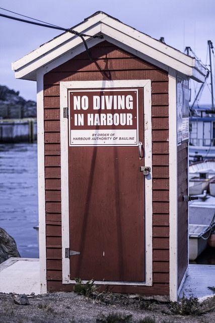No Diving. Bauline, Newfoundland. | Flickr - Photo Sharing!