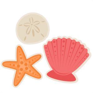 Seashells SVG scrapbook cut file cute clipart files for silhouette cricut pazzles free svgs free svg cuts cute cut files
