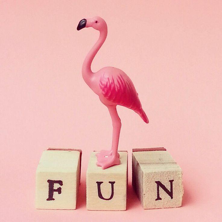 104 best images about flamingo on Pinterest | Flamingo ... - photo#24