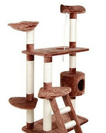 Find this great Multi Level #Cat #Scratching #Poles #Tree at http://ow.ly/T7Ze300dVe. Available now for $94.45 #AnbmartAU #anbmartcollection #pet #petlovers #lovemypet #supplies #quality #loveit #aussiepet #aussiecat #catlover #giftsforpets #australia
