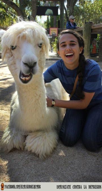 -). #humor    www.elmuseodelhumor.com