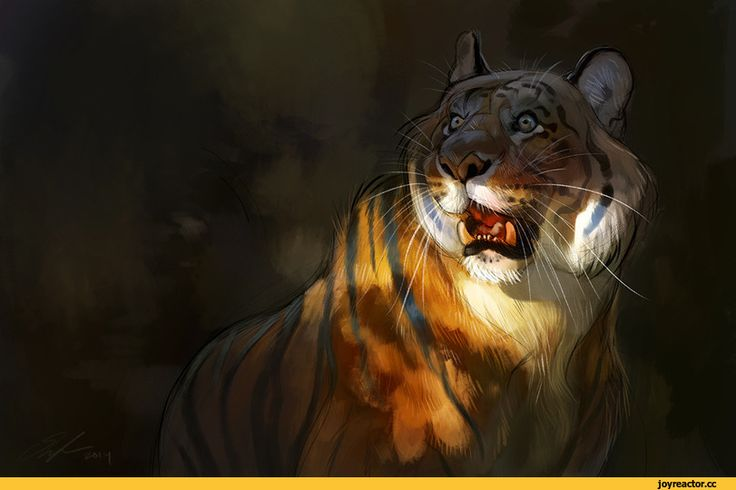 ailah,art,арт,красивые картинки,tiger,animal art
